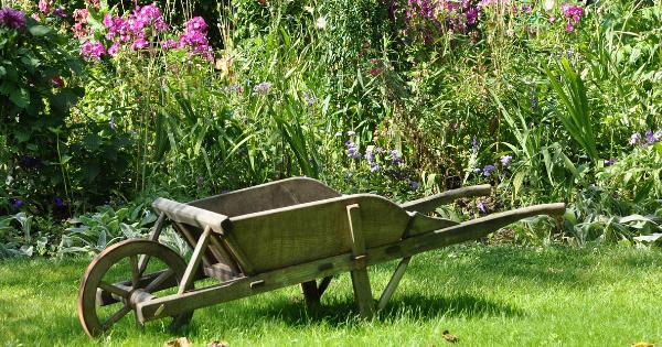 English Editorial Services – Garden leave/Nucená dovolená